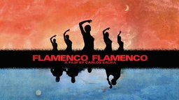 Flamenco, Flamenco - A Musical Odyssey Through a Dynamic Art Form
